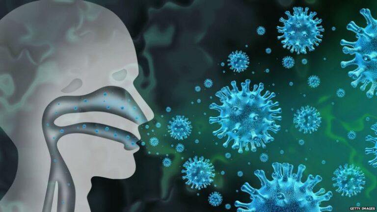 रुघाले कसरी मानव शरीरका कोषबाट कोभिड गराउने विषाणुलाई गलहत्याइदिन्छ